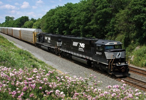 Norfolk Southern Railroad Train